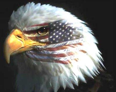 Libertad, liberalismo y democracia (y 3)