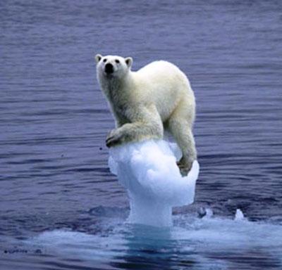 La molesta realidad del cambio climático